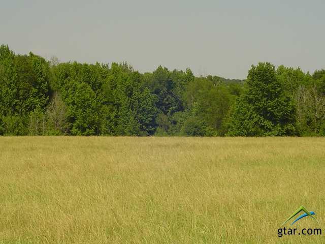 Rural Acreage - Bullard, TX (photo 2)