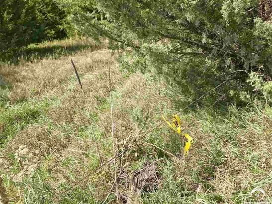 Rural - Overbrook, KS (photo 2)