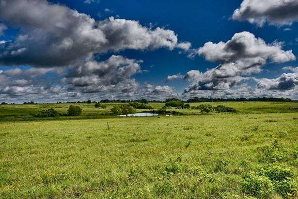 Ranch, Free Standing - Chappell Hill, TX (photo 1)