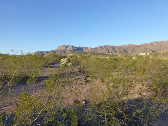 Residential Acreage,Residential Lot - Gold Canyon, AZ (photo 4)