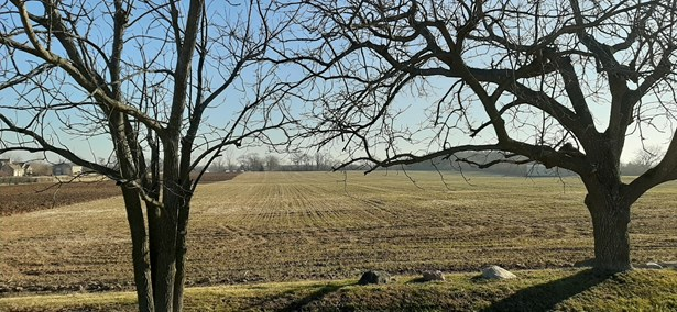 Land - Marengo, IL