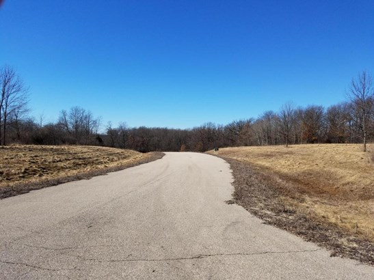 Vacant Land - Whitewater, WI (photo 3)