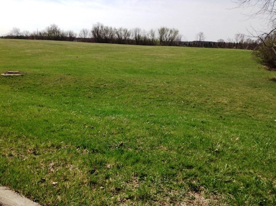 Vacant Land - Delavan, WI (photo 1)