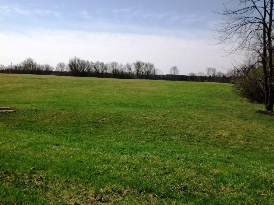 Vacant Land - Delavan, WI (photo 4)