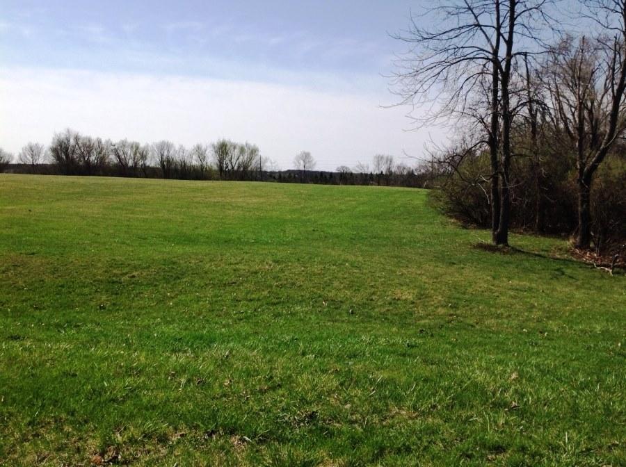 Vacant Land - Delavan, WI (photo 5)