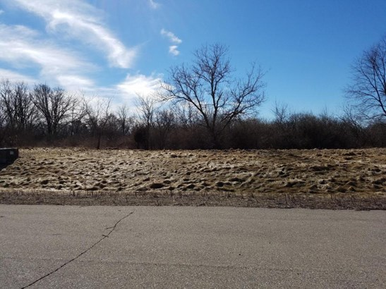 Vacant Land - Whitewater, WI (photo 2)