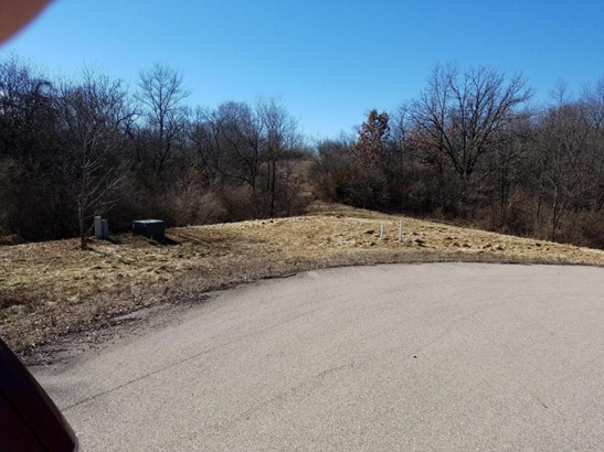 Vacant Land - Whitewater, WI (photo 5)