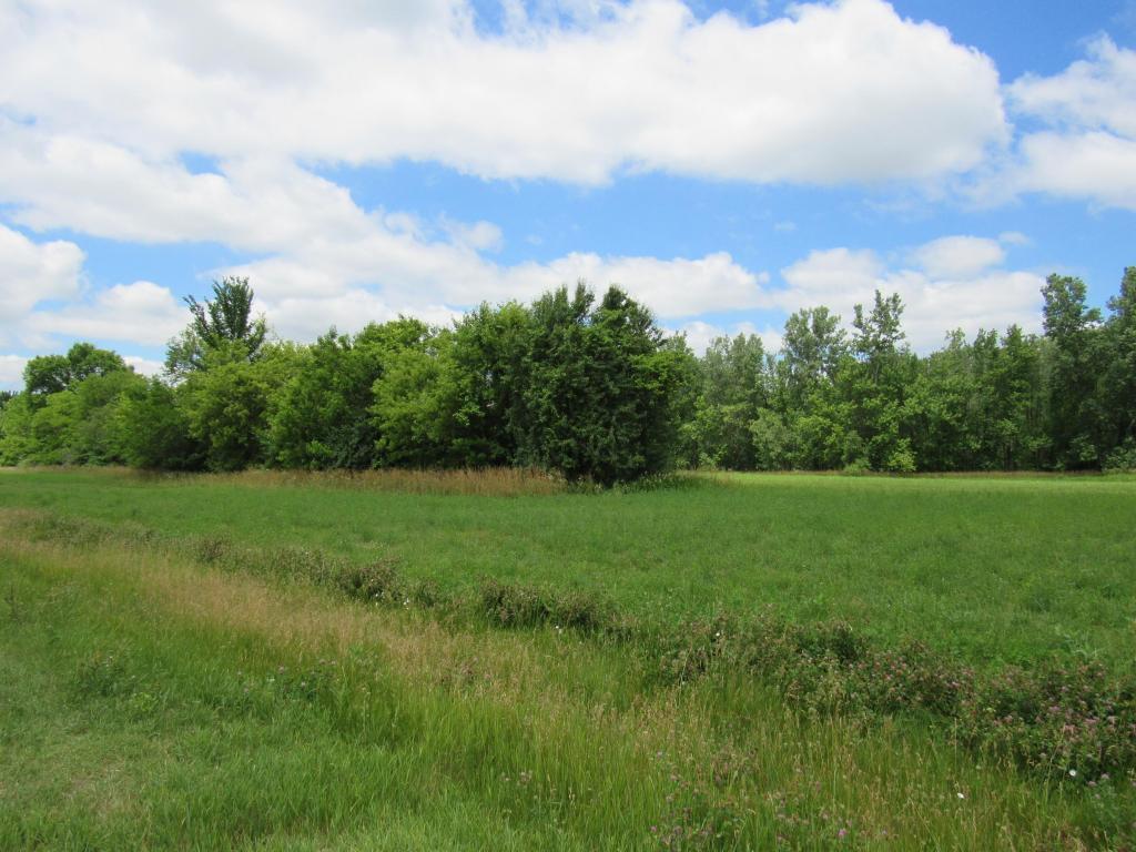 Agriculture - Salem, WI (photo 4)