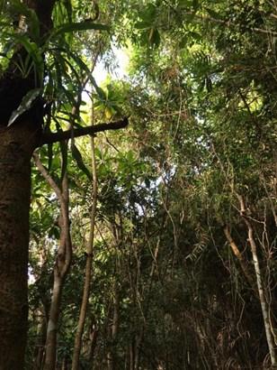 Marbo Cave Road-sasayan Valley , Mangilao - GUM (photo 4)