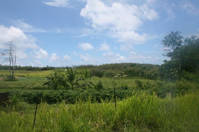 Route 4 , Inarajan - GUM (photo 1)