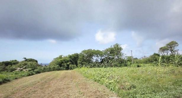 Route 4 , Inarajan - GUM (photo 4)