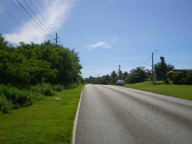 Route 17 , Yona - GUM (photo 4)