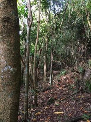 Marbo Cave Sasayan (paved) , Mangilao - GUM (photo 2)