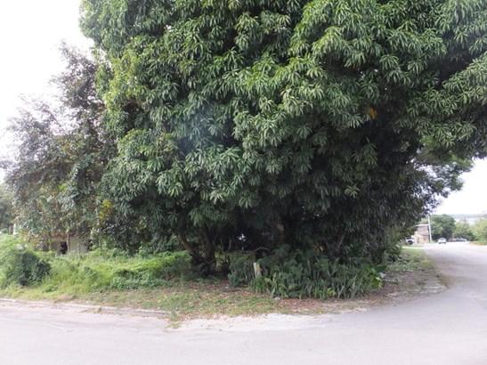 Calle Delos Marteres Street , Agat - GUM (photo 3)