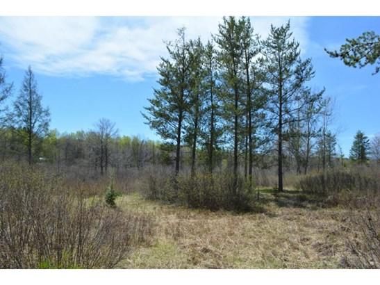 Lots & Land - Barclay Twp, MN (photo 1)