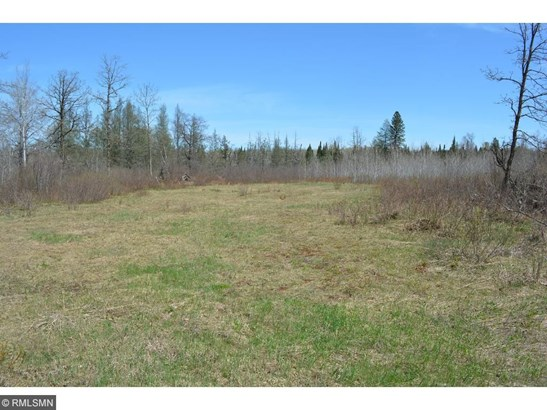 Lots & Land - Barclay Twp, MN (photo 4)