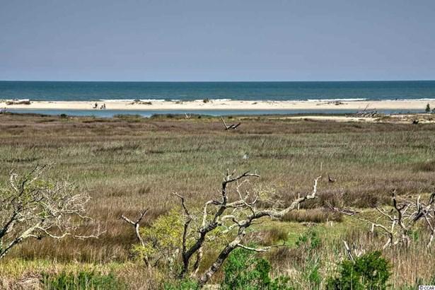 Raised Beach, Detached - Pawleys Island, SC (photo 3)