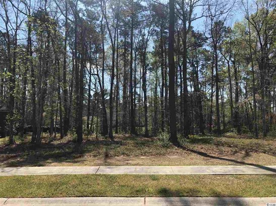 Residential Lot - Myrtle Beach, SC (photo 1)