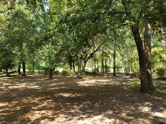 Santee Cooper Land - Manning, SC