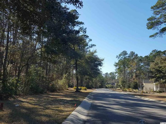 Residential Lot - Georgetown, SC (photo 4)