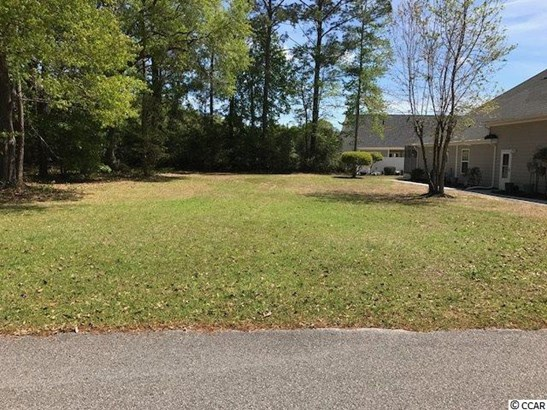 Residential Lot - Conway, SC (photo 1)
