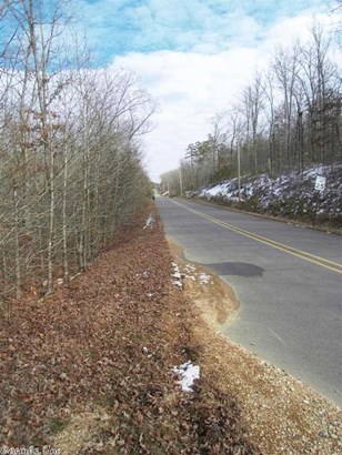 Residential Lot - Paron, AR (photo 2)