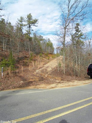 Residential Lot - Paron, AR (photo 3)
