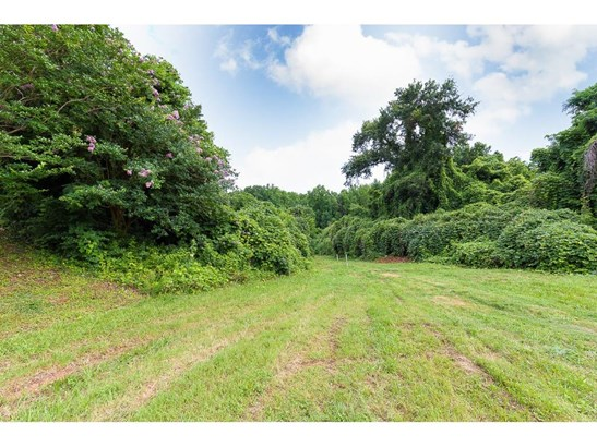 Land/Farm - Gainesville, GA (photo 2)