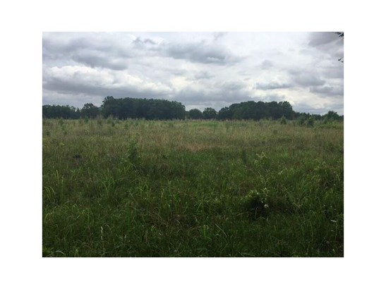 Land/Farm - Woodbury, GA (photo 3)