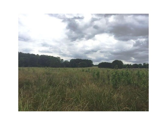 Land/Farm - Woodbury, GA (photo 4)