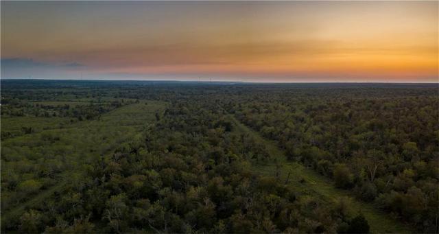 0 Hwy 21 W, Cedar Creek, TX - USA (photo 3)
