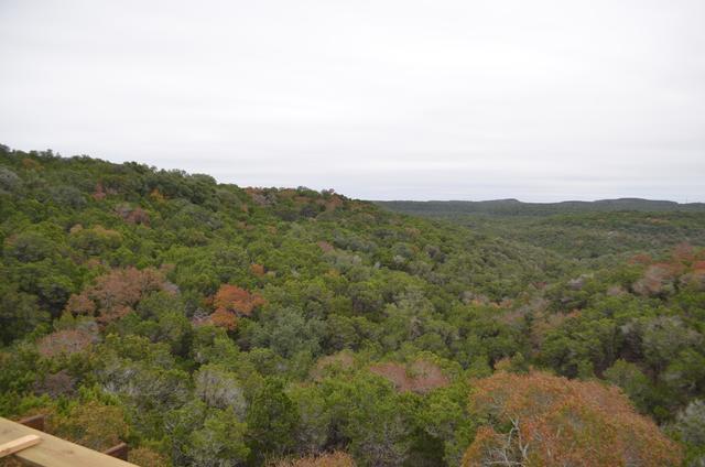 1016 Barrie Dr 5 5, Austin, TX - USA (photo 2)