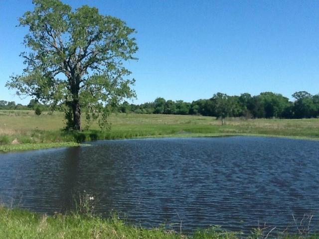 582 Fm 1854, Dale, TX - USA (photo 2)