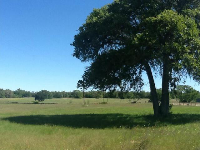582 Fm 1854, Dale, TX - USA (photo 3)