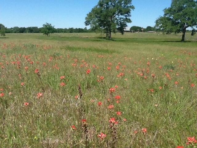 582 Fm 1854, Dale, TX - USA (photo 4)