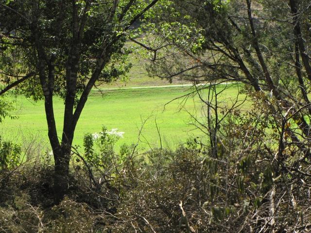 5207 Country Club Dr, Lago Vista, TX - USA (photo 3)