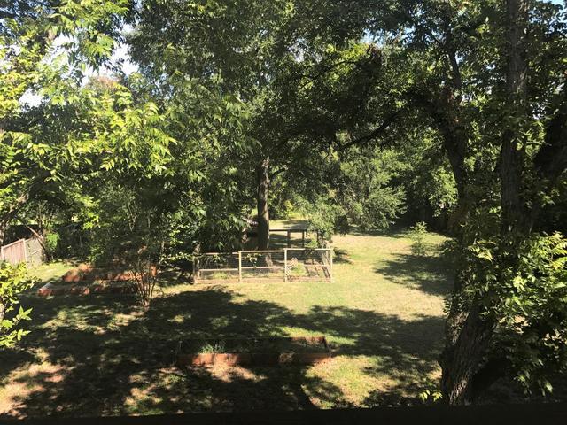 4715 Bull Creek Rd, Austin, TX - USA (photo 5)