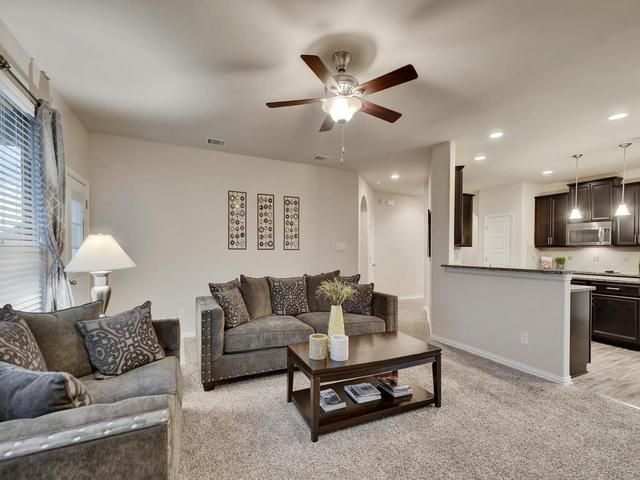 913 Emory Stable Dr, Hutto, TX - USA (photo 4)