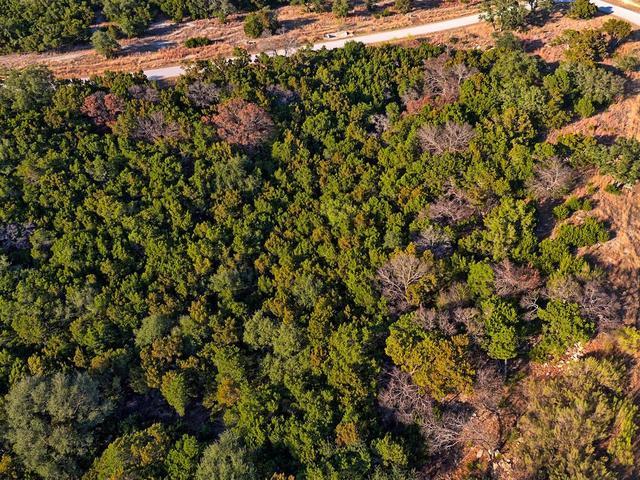 18604 Sugar Maple Dr, Lago Vista, TX - USA (photo 5)