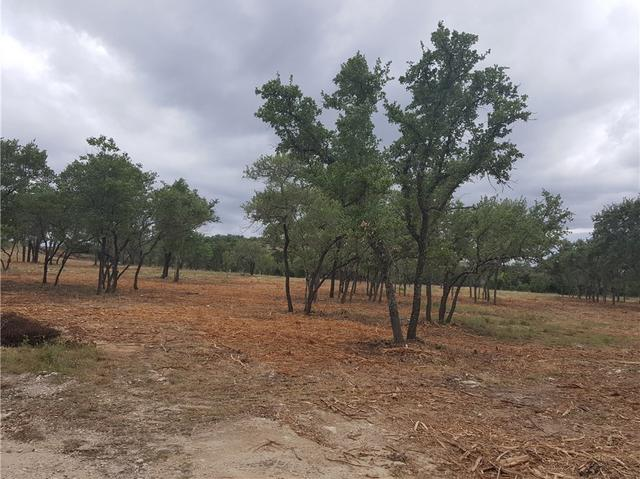 2711 S Pace Bend, Spicewood, TX - USA (photo 2)
