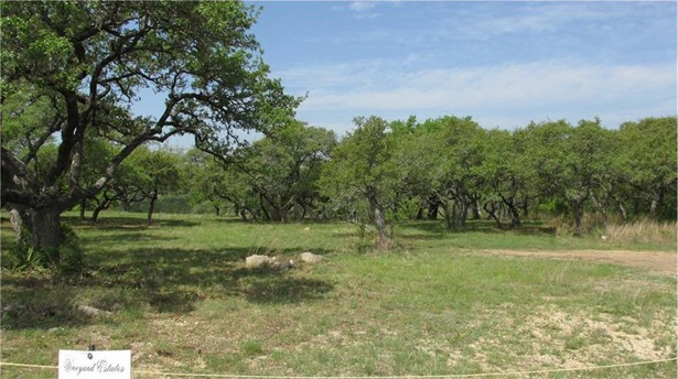 301 Napa Ct, Driftwood, TX - USA (photo 4)