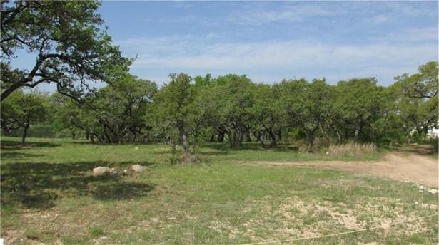 301 Napa Ct, Driftwood, TX - USA (photo 5)