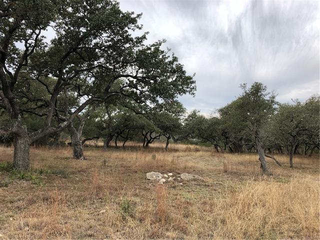 301 Napa Ct, Driftwood, TX - USA (photo 1)