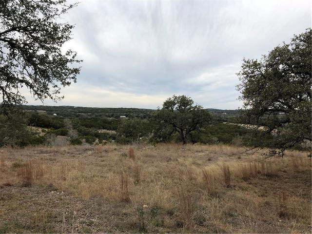 301 Napa Ct, Driftwood, TX - USA (photo 2)