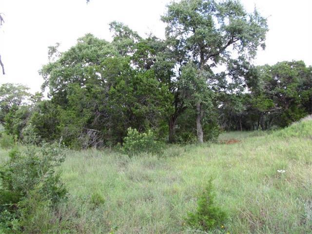 18841 Hidden Ridge Pl, Jonestown, TX - USA (photo 4)