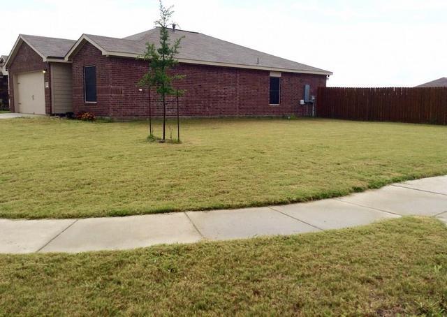 1324 Twin Estates Dr, Kyle, TX - USA (photo 3)