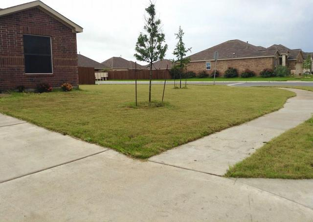 1324 Twin Estates Dr, Kyle, TX - USA (photo 5)