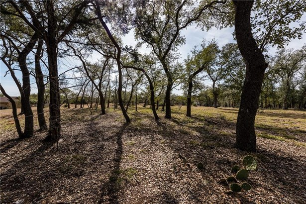 1036 Hays Country Acres Rd, Dripping Springs, TX - USA (photo 2)