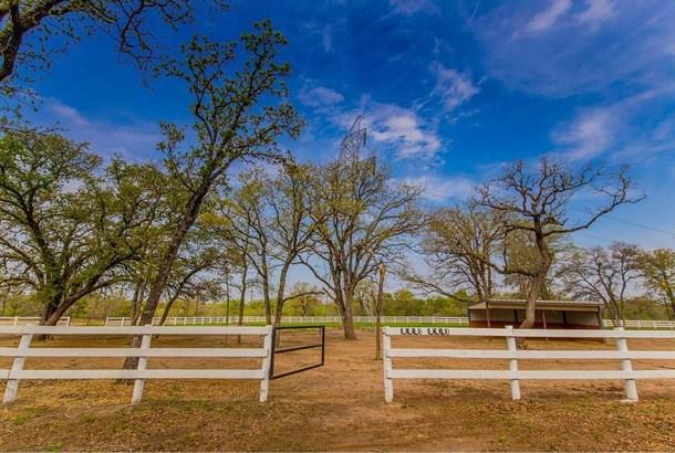 21218 Blake Manor Rd, Manor, TX - USA (photo 4)