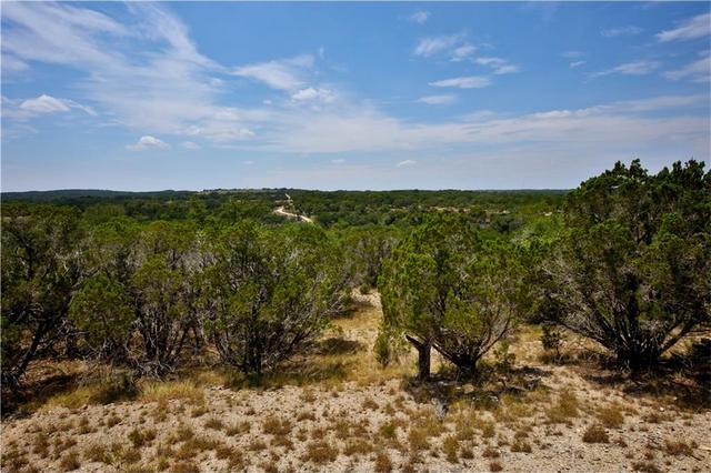 Tbd Pursley Rd, Dripping Springs, TX - USA (photo 2)